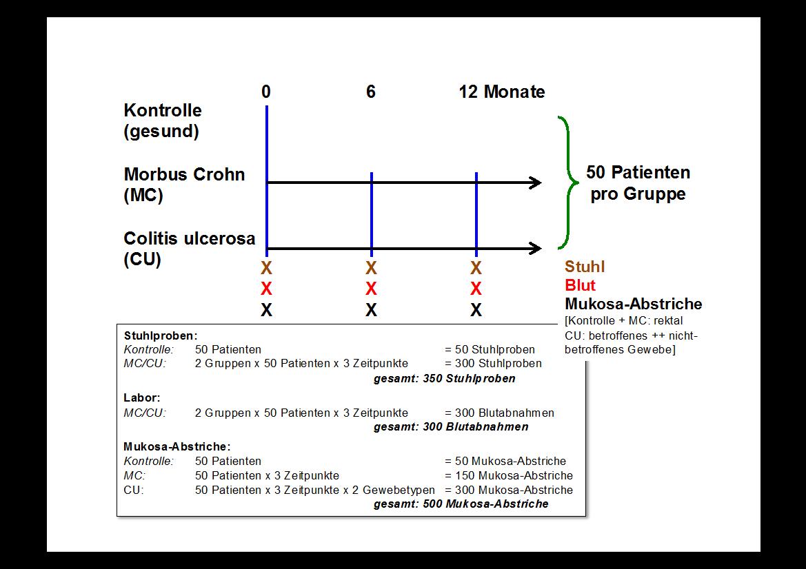 Studien-Protokoll Mikrobiom | Praxisklinik Marburg